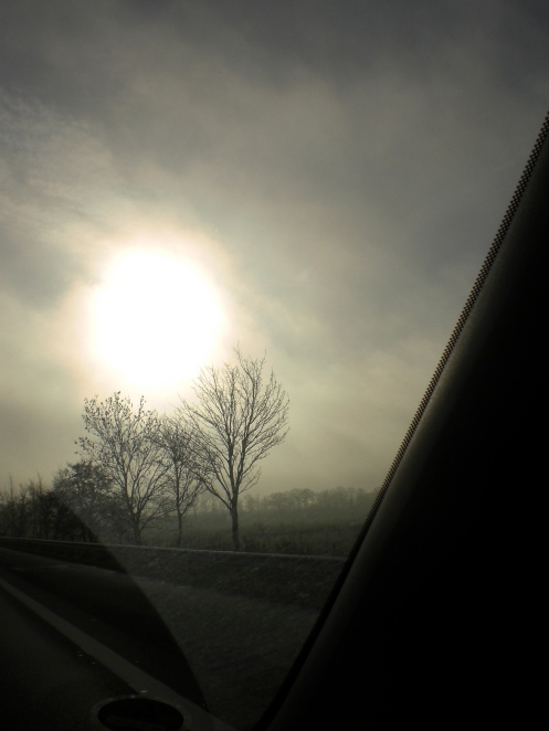 Muted winter sun on a misty morning